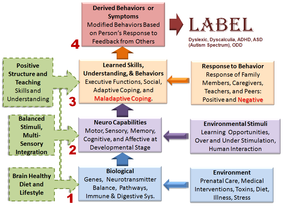4myLearn Learning Disability Model